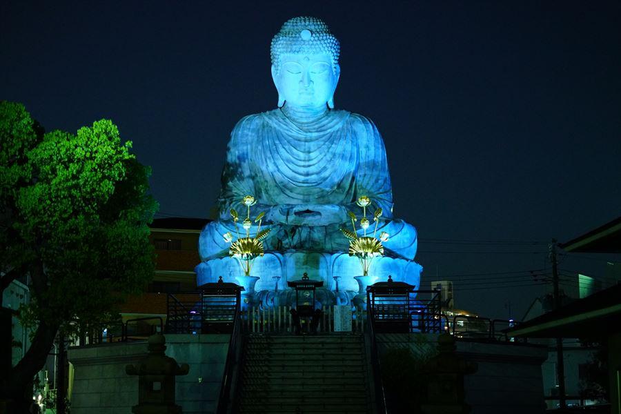 Light up blue 兵庫大佛